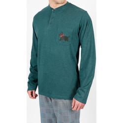 Kleidung Herren Pyjamas/ Nachthemden Admas For Men Homewear-Pyjamahose LouLou Britisch-grüne Admas Dunkelgrün