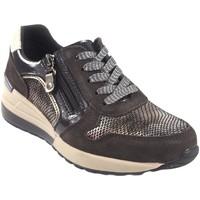 Schuhe Damen Sneaker Low Amarpies Damenschuh  18700 achtern braun Braun
