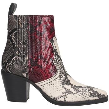 Schuhe Damen Low Boots Steve Madden SMSGENIVA-BRGGRY Texano Frau MULTI MULTI