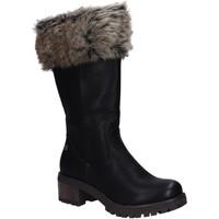 Schuhe Damen Klassische Stiefel Refresh 64661 Negro