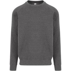 Kleidung Herren Sweatshirts Awdis JH130 Anthrazit