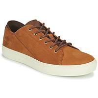 Schuhe Herren Sneaker Low Timberland ADV 2.0 CUPSOLE MODERN OX Cognac