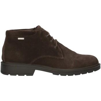 Schuhe Herren Sneaker High IgI&CO 6102666 Knöchel Harren KAFFEE KAFFEE