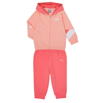 Kleidung Mädchen Kleider & Outfits Puma BB MINICATS REBEL Rose / Grau