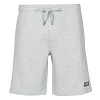 Kleidung Herren Shorts / Bermudas Dickies CHAMPLIN Grau