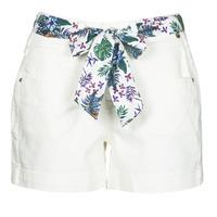 Kleidung Damen Shorts / Bermudas Freeman T.Porter GINGER MUZEY Schwarz / weiss / gold / Weiss