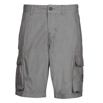 Kleidung Herren Shorts / Bermudas Napapijri NORI Grau
