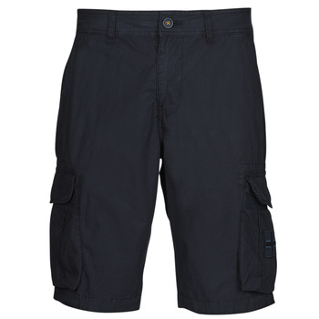 Kleidung Herren Shorts / Bermudas Napapijri NORI Marine
