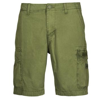 Kleidung Herren Shorts / Bermudas Napapijri NOSTRAN Grün