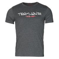 Kleidung Herren T-Shirts Teddy Smith TICLASS Grau