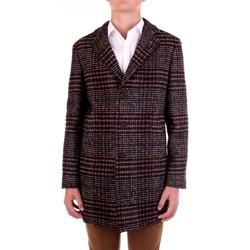 Kleidung Herren Mäntel Manuel Ritz 2932C4448-203731 Braun