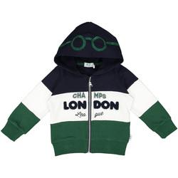 Kleidung Kinder Sweatshirts Melby 20D0210 Grün