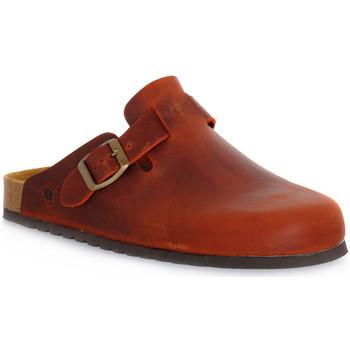 Schuhe Pantoletten / Clogs Bioline RUGGINE INGRASSATO Arancione