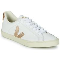 Schuhe Damen Sneaker Low Veja ESPLAR LOGO Weiss / Gold