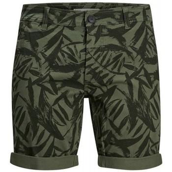 Kleidung Herren Shorts / Bermudas Produkt Takm chino 12171311 Grün