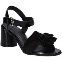 Schuhe Damen Sandalen / Sandaletten Elvio Zanon EJ5605P.L Schwarz