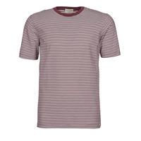 Kleidung Herren T-Shirts Scotch & Soda 160847 Rot / Weiss