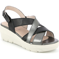 Schuhe Damen Sandalen / Sandaletten Grunland SA1877 Schwarz