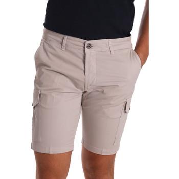 Kleidung Herren Shorts / Bermudas Sei3sei PZV130 7148 Beige