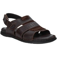 Schuhe Herren Sandalen / Sandaletten Valleverde 20831 Braun