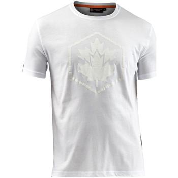 Kleidung Herren T-Shirts Lumberjack CM60343 005 514 Weiß