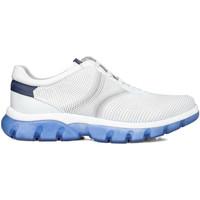Schuhe Herren Sneaker Low CallagHan 42700 Weiß