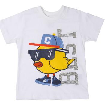 Kleidung Kinder T-Shirts Chicco 09006918000000 Weiß