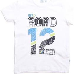 Kleidung Kinder T-Shirts Melby 70E5544 Weiß