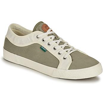 Schuhe Herren Sneaker Low Kickers ARVEIL Kaki / Weiss