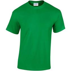 Kleidung Herren T-Shirts Gildan GD05 Grün