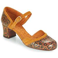 Schuhe Damen Pumps Chie Mihara TROMPETA Braun