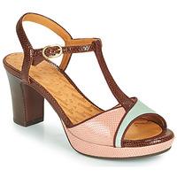 Schuhe Damen Sandalen / Sandaletten Chie Mihara NATI Braun / Rose / Grün