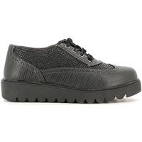 Schuhe Kinder Derby-Schuhe Didiblu D3165 Schwarz