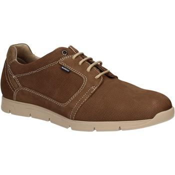 Schuhe Herren Derby-Schuhe Baerchi 5080 Braun