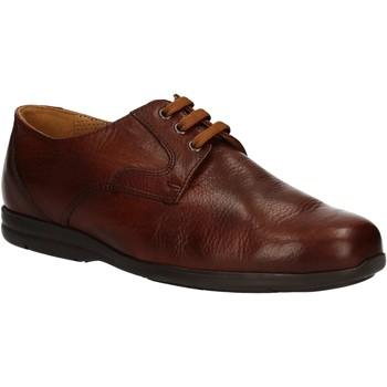 Schuhe Herren Derby-Schuhe Fontana 5685-VI Braun