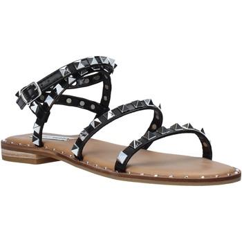Schuhe Damen Sandalen / Sandaletten Steve Madden SMSTRAVEL-BLK Schwarz