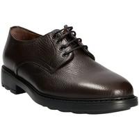 Schuhe Herren Derby-Schuhe Maritan G 111333 Braun