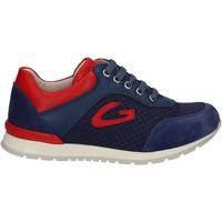 Schuhe Kinder Sneaker Low Alberto Guardiani GK23301 Blau