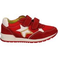 Schuhe Kinder Sneaker Low Melania ME2092D7E.F Rot