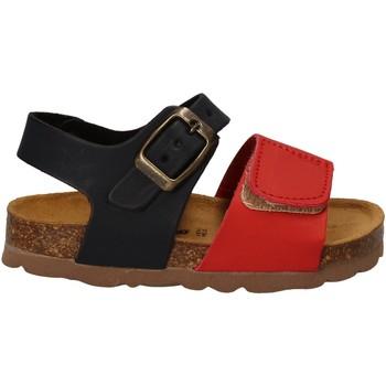Schuhe Kinder Sandalen / Sandaletten Bamboo BAM-218 Rot