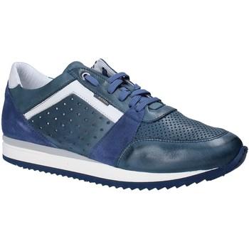 Schuhe Herren Sneaker Low Exton 558 Blau