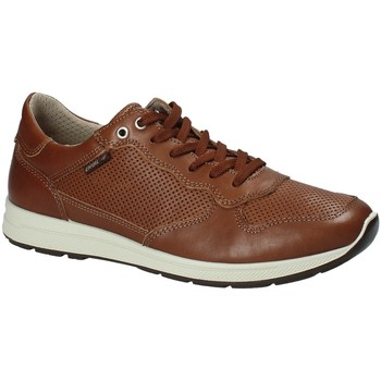 Schuhe Herren Sneaker Low Enval 1211422 Braun