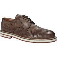 Schuhe Herren Derby-Schuhe Exton 672 Braun