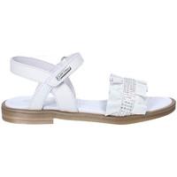 Schuhe Mädchen Sandalen / Sandaletten Balducci 10233A Weiß
