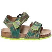 Schuhe Kinder Sandalen / Sandaletten Asso 64205 Braun