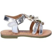 Schuhe Mädchen Sandalen / Sandaletten Asso 55002 Grau