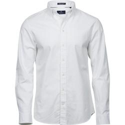Kleidung Herren Langärmelige Hemden Tee Jays TJ4000 Weiß