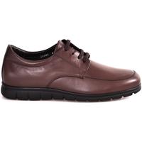 Schuhe Herren Sneaker Low Soldini 20583 P Braun