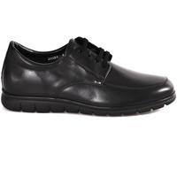 Schuhe Herren Derby-Schuhe Soldini 20583 P Schwarz