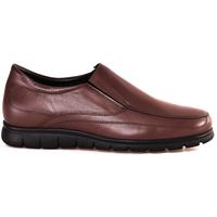 Schuhe Herren Slipper Soldini 20366 P Braun
